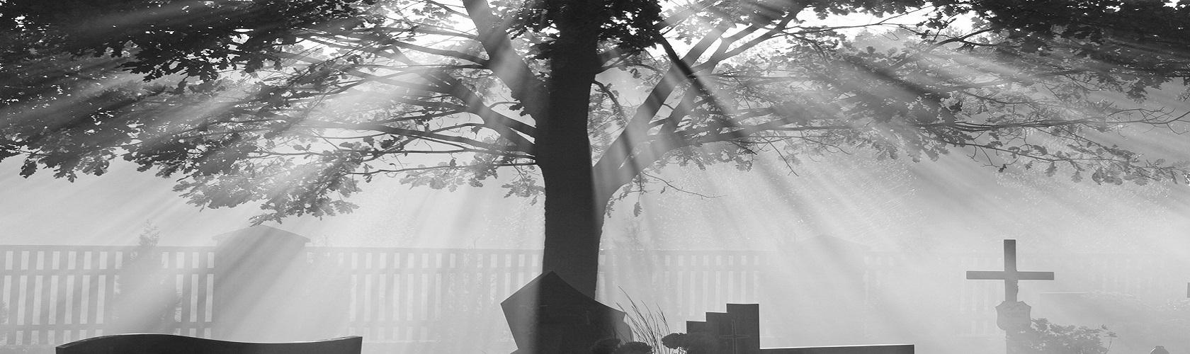 funerali monza galli
